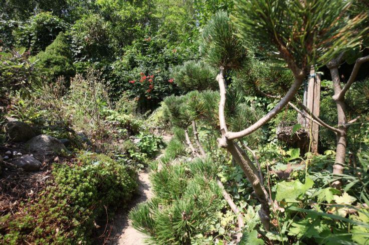 Fengshui Garten in Neeberg