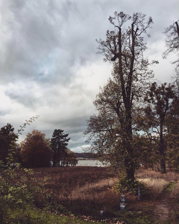 Herbstzeitlose Stille liegt über dem Kummerower See © Sandra Grüning
