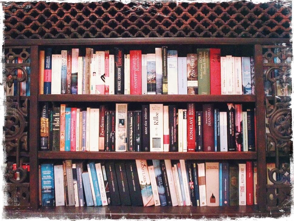 Ein Regal voller Bücher © Sandra Grüning